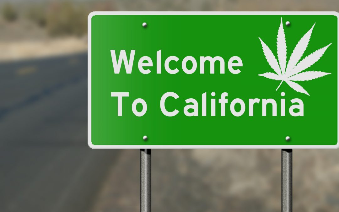 California Cultivation Supply, Trends & Forecast (Article 2 of 2)